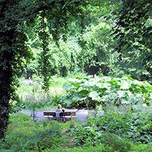 Der botanische Garten in Göttingen