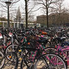 Fahrradmengen am Hauptbahnhof Göttingen